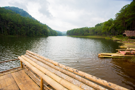 bamboo floating in the water Banco de Imagens