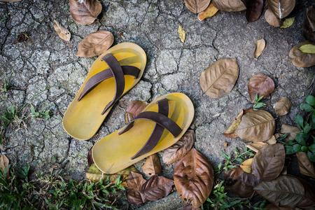 slipper on the ground