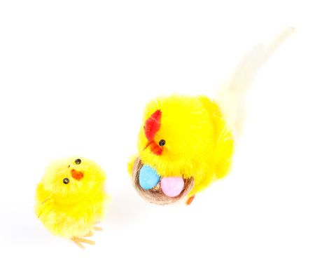 Isolated young Easter chicken and cock isolated on white background photo