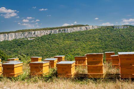 Beehives Reklamní fotografie