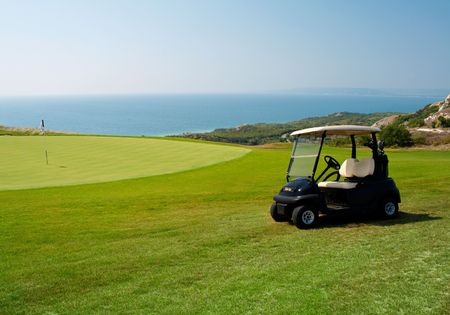 golf cart: Green lawn for golf playing. Small golf car waiting for golfers