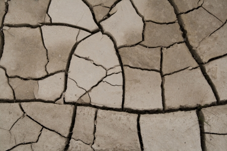 cracked soil photo
