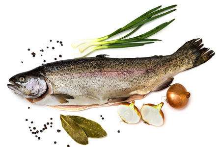 bay leaf: Fresh Salmon trout with bay leaf, black pepper and onion isolated