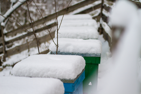 A pair of snow covered bee hives. Apiary in wintertime. Beehives covered with snow in wintertime. Beekeeping