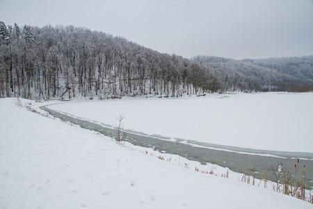 Winter in forest frozen lake Reklamní fotografie