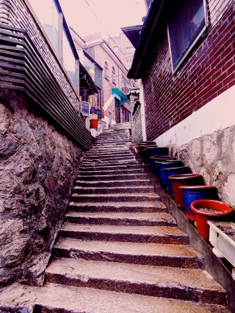 Steps at an old alley after the rain