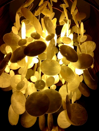Lamp with shells