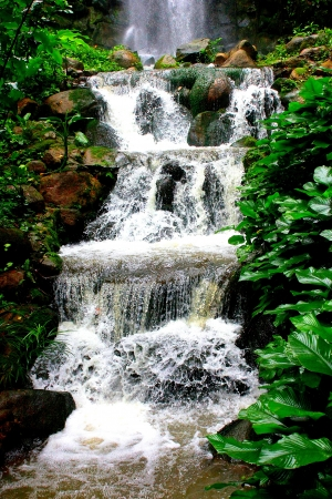Water fall Stock Photo - 19455731