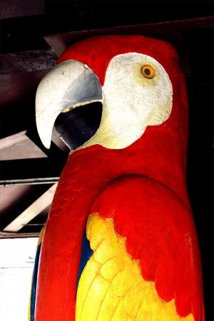 Parrot statue Stock Photo - 19455588