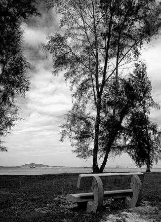 Bench by the beach Stock Photo