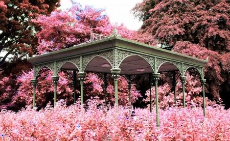 pavillion: Pavillion in the park