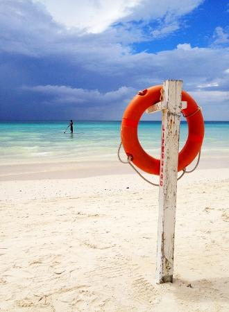Lifebuoy by the beach