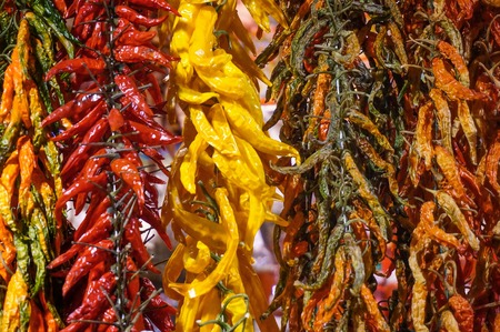 Dried chilies hanging in a shop