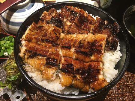 Grilled unagi with rice Stock Photo
