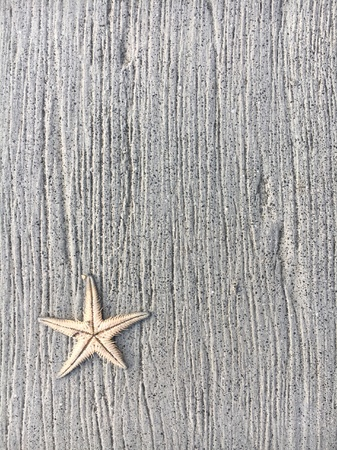 Starfish with rustic wooden background Stock Photo