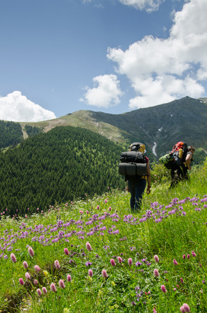 english ethnicity: The hikers between flowers