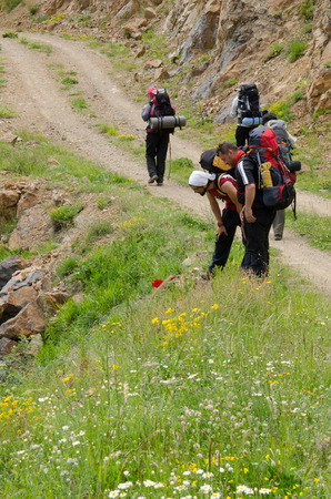 outdoor pursuit: Hikers at examining flowers