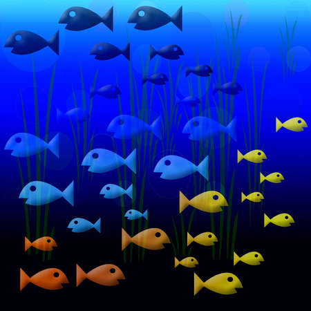 back and forth: Assorted colored fish swimming back and forth