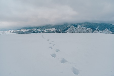 Footprints on the fresh snow in the mountains. Beautiful gloomy winter landscape