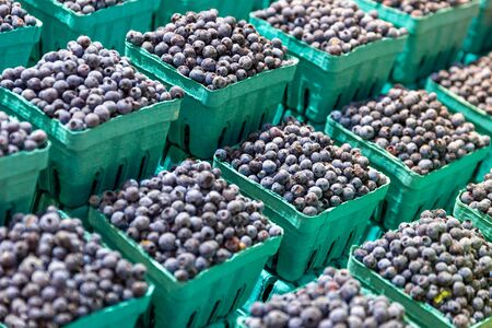 Fresh blueberries for sale on a farmers market stall