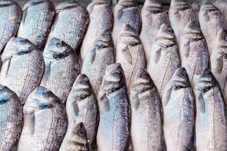 Fresh sea bass, Dicentrarchus labrax, on display on a UK fishmongers market stall Reklamní fotografie