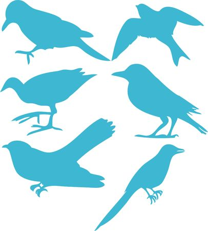 Birds Vector Digital Clipart  3 Vector