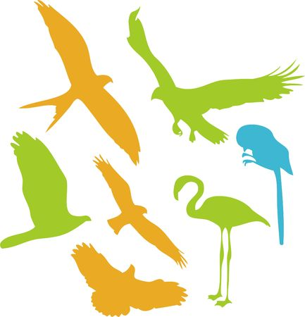 swoop: Aves Vector Clipart digital 2