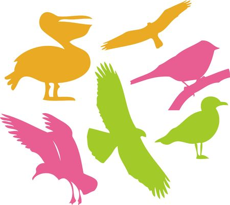 Birds Vector Digital Clipart  1 Illustration