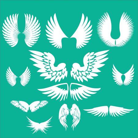 Wings Clip art Vector