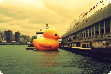 Rubber Duck with Hong Kong seaview