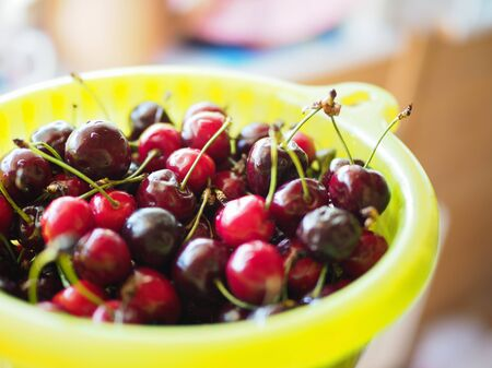 large bowl with ripe cherries summer treat Imagens