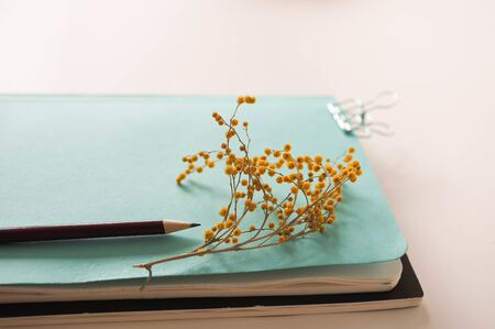 mocap for background stationery. notebooks and pencil and flower are on the table