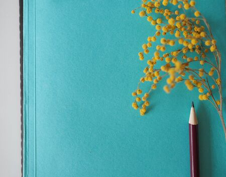 mocap for background stationery. notebooks and pencil and flower are on the table Stok Fotoğraf - 131659096