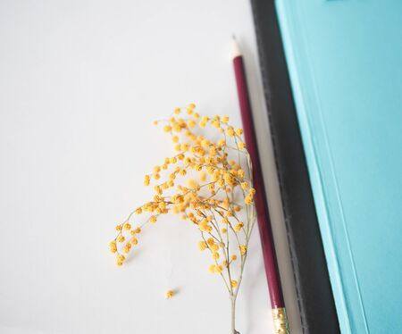 mocap for background stationery. notebooks and pencil and flower are on the table Stok Fotoğraf - 131658840