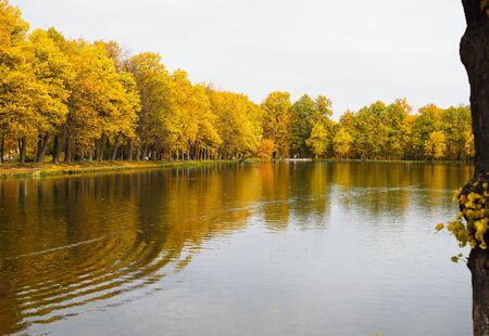 beautiful colorful autumn orange landscape with lake Stock Photo