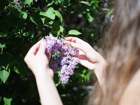 girl holding a plant beautiful lilac flower