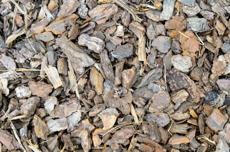 Decorative tree bark chips for cover garden ground  Stock Photo - 14889931