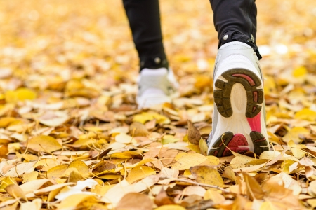 Sport and walking outside concept. Female feet wearing white trainers stepping firmly  on ground full of autumn golden leaves.
