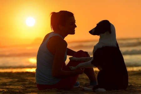 Woman with her cute dog in the beach on golden sunset background  Girl enjoying her pet friendship and affection towards beautiful sun and sea