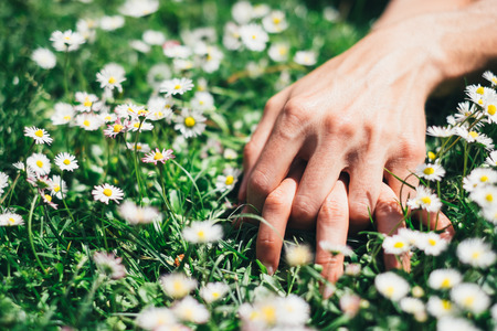 Passion and love on spring concept  Lovers hands on flowers field  photo