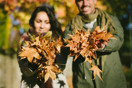 Young couple holding a handful of autumn leaves at the park. 写真素材