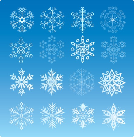 Set Of 16 Vector Snowflakes Stock Vector - 3642988