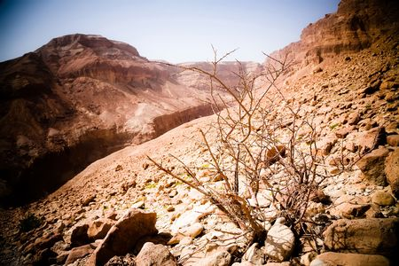 Negev Desert And Mountains In Red. Israel  photo