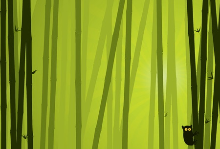 Bamboo Background. Nature Background Series. Vector