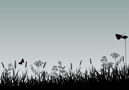 summer meadow: Vector Abstract Nature Background. Summer Season. Illustration
