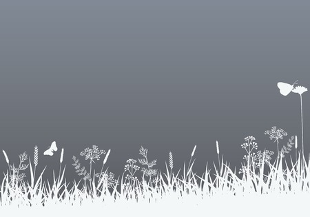 herb garden: Abstract Vector Nature Background. Summer Season.