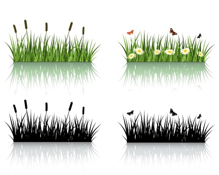Vector Grass Set. Nature Collection. Vector