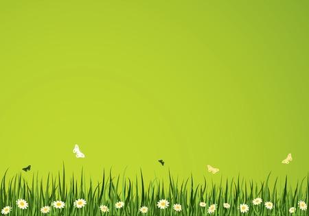 vectors abstract: Horario de verano de vectores de fondo. Colecci�n de la Naturaleza.