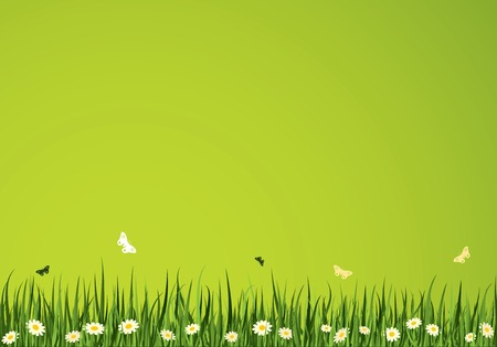 illustrations and vector art: Summer Time Vector Background. Nature Collection.