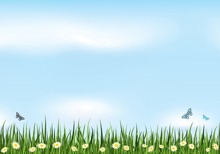 Summer vector background. Nature Collection. Stock Vector - 4997550